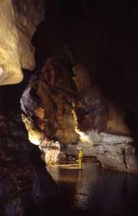 Galerie de la Machoire à Pourpevelle